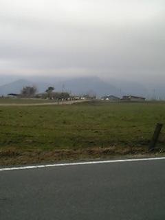 富士宮市の牧場