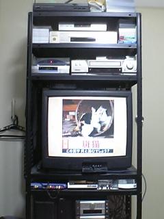 テレビの棚