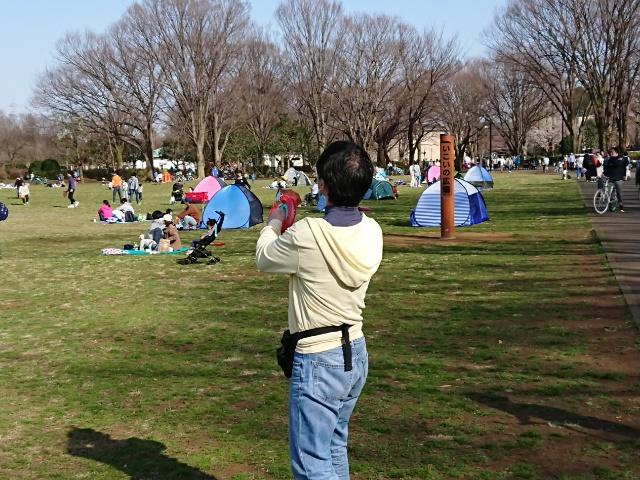 凧を操る人