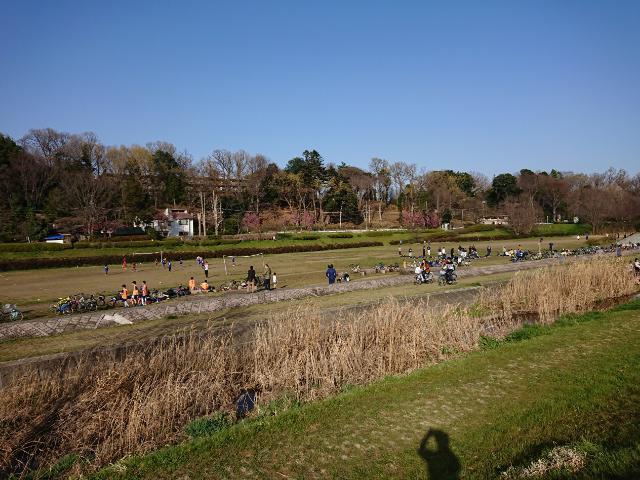 武蔵野公園のグラウンド
