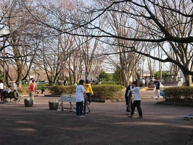 武蔵野公園のスケボーエリア